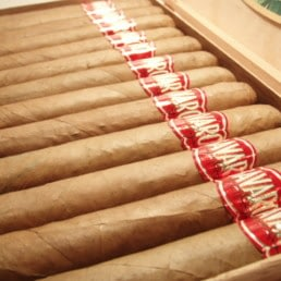 Bavaro cigars