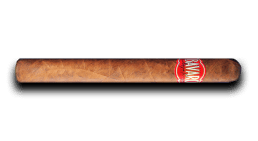 Bavaro Cigar - Churchill 7x50