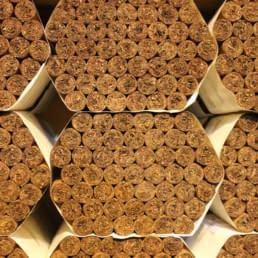 Arbaje Cigars