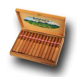 Bavaro Arbaje Cigar